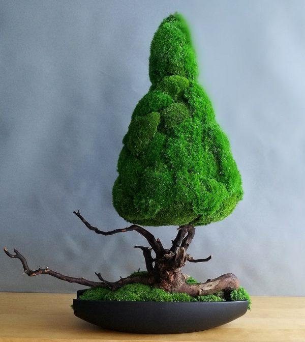 Drzewo z mchu stabilizowanego
