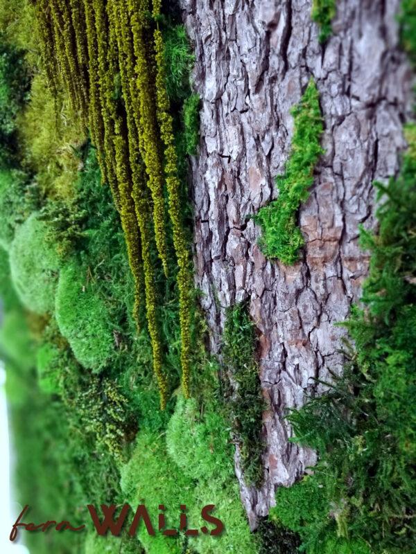 Obraz z mchu i roślin stabilizowanych 97 x 67 cm