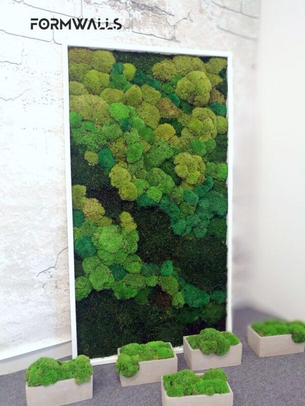 Obraz z mchów stabilizowanych cieniowany