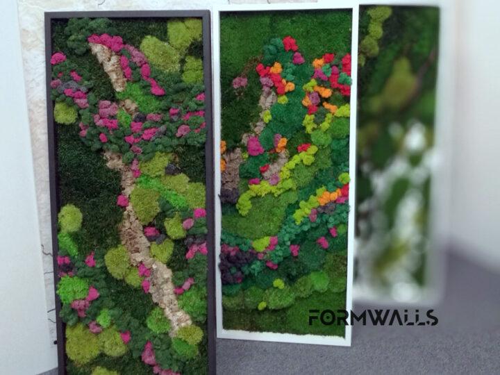Obrazy z mchów stabilizowanych