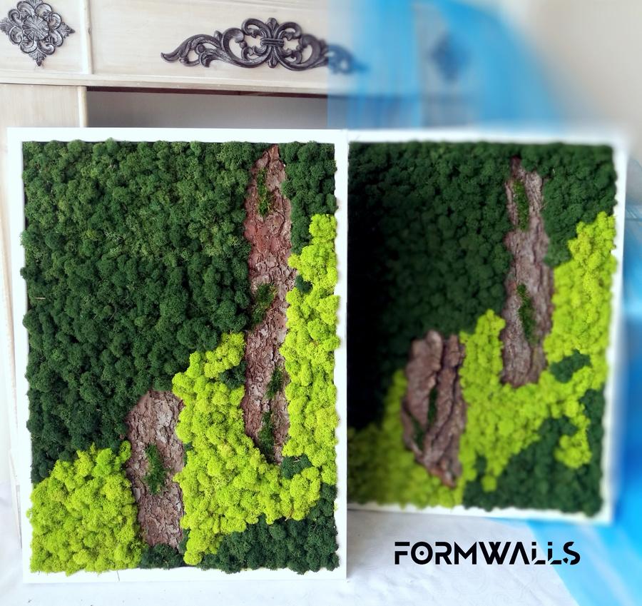 Obrazy z chrobotka reniferowego 70 x 50 cm komplet 2 szt